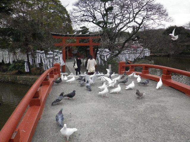 """02-2) """" 旗上弁財天社 """"  _ 16.02.24 雪が降りそうな日、立春を大きく過ぎたことに気づいた 鎌倉「鶴岡八幡宮」。"""