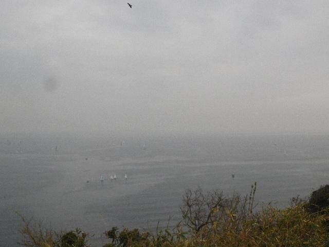 08-3-5/6) 展望場所からパノラマ風撮ったつもり  _ 16.03.06 曇りのち雨の逗子「大崎公園」