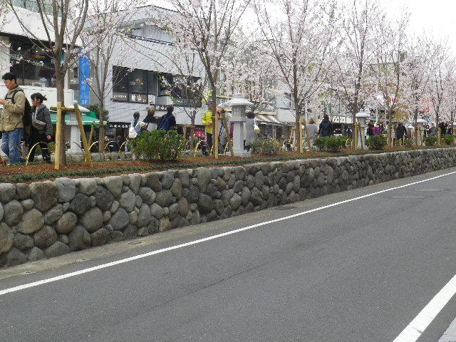 07) 石積みの様子 _ 16.04.02 鎌倉「鶴岡八幡宮」桜満開の頃
