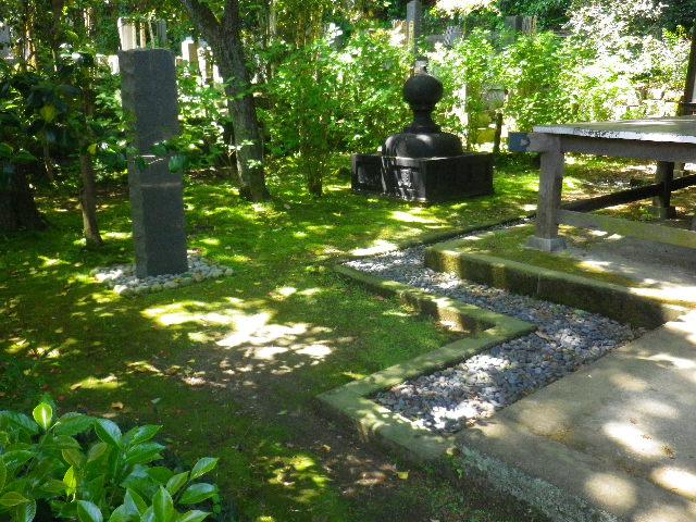 07)  _ 16.04.30 晩春の・・・というよりも、立夏直前というべき緑が濃い  鎌倉「安国論寺」。