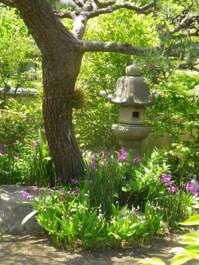07) _ 16.04.30 立夏直前の 鎌倉「教恩寺」