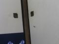 01)   16.10.23 ヤモリさん、こんばんは。 ' ファンデルワールス 力 ' という高尚な技を使っているから居候を許す!
