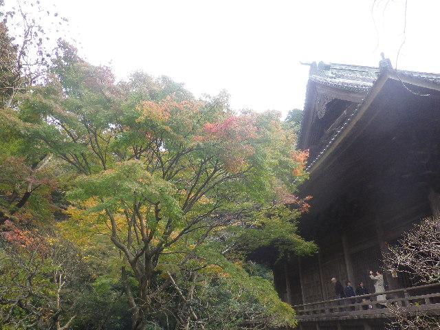 03-2)   16.11.28 初冬の 鎌倉「妙本寺」