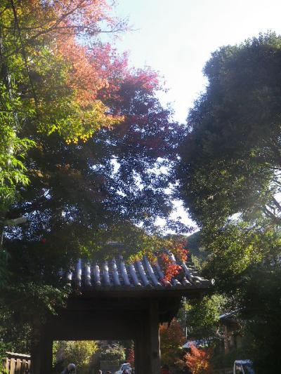 01-1)   16.12.02 初冬の 鎌倉「瑞泉寺」