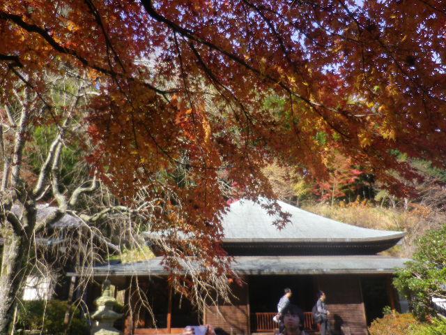 04-2)   16.12.05 初冬の 鎌倉「東慶寺」