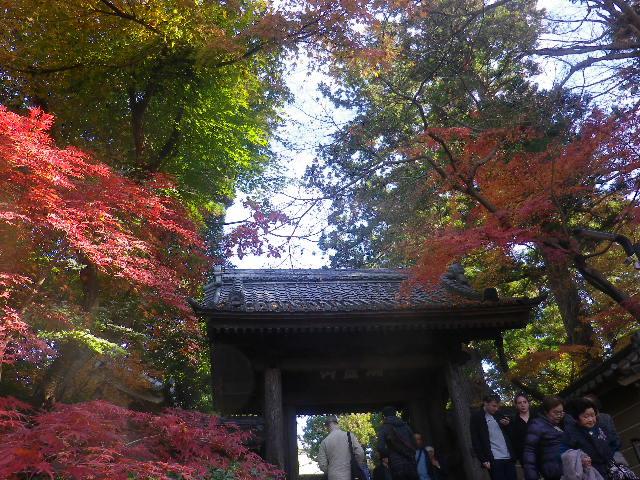 A01-2)  16.12.05 初冬の 鎌倉「円覚寺」