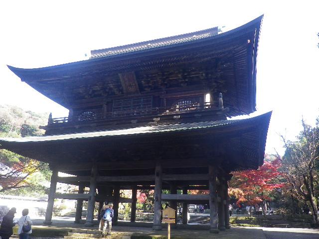 B01-2)  16.12.05 初冬の 鎌倉「円覚寺」