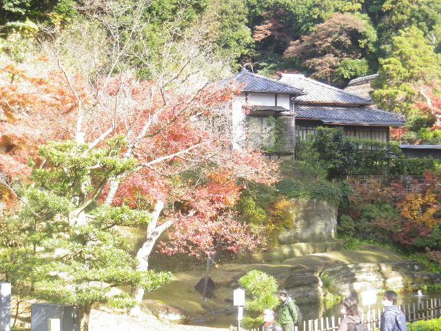 F01)  16.12.05 初冬の 鎌倉「円覚寺」