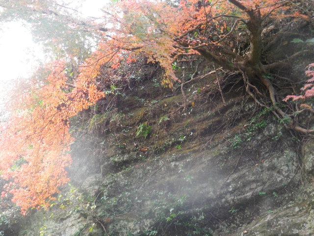 n-2) 平成 ' 巡礼の道 ' を進行中