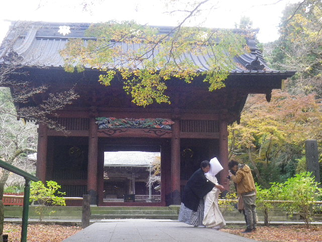 02)   16.12.15 鎌倉「妙本寺」 冬至を迎えようとする頃