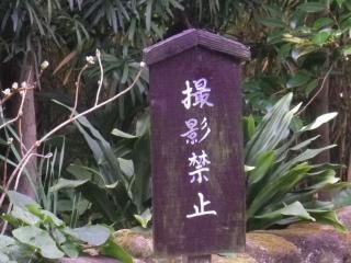 02)    17.02.18 鎌倉「極楽寺」