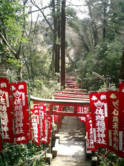 06) 佐助稲荷。 階段を振り返る