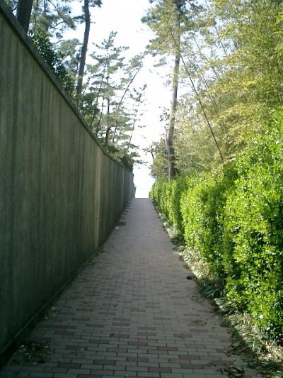 12) 海岸への路地。右は神奈川県立近代美術館_葉山。左は「しおさい公園、しおさい博物館」