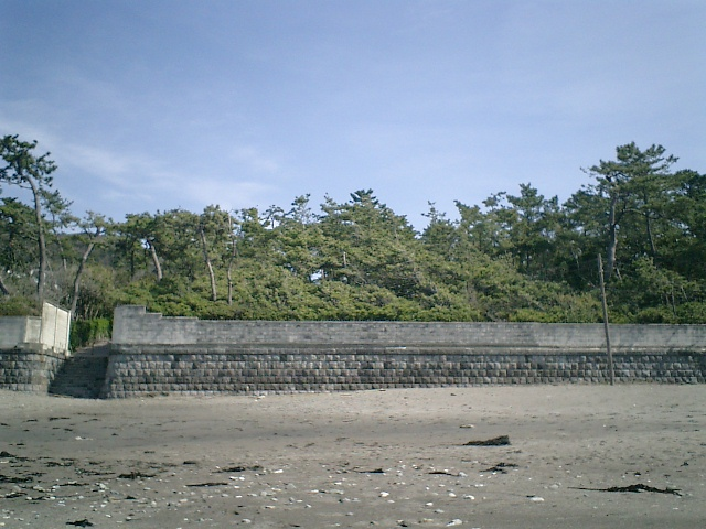 16) 海岸から「葉山しおさい公園、しおさい博物館」を観る。