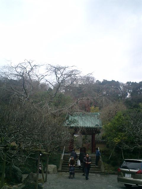 11_06.12.17鎌倉市長谷「光則寺」紅葉の季節