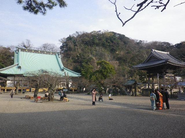 06)    17.03.30 鎌倉「光明寺」 山門周辺の桜