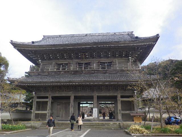 01)    17.04.02 鎌倉「光明寺」の桜