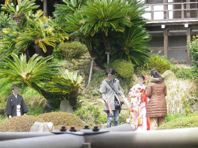 13-1a)   17.04.02 鎌倉「光明寺」の桜
