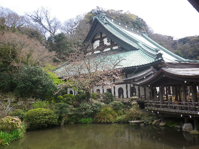 14-1)   17.04.02 鎌倉「光明寺」の桜