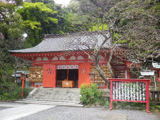 03)    17.04.10 鎌倉「荏柄天神社」の桜