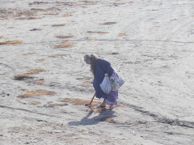 11) 推測だが イベントでもなさそうで申し合わせでもなさそうにお見受けの、自主的に単独で海岸清掃を為さっておられる方。    17.04.23 のどが渇いたから発泡酒のんだ