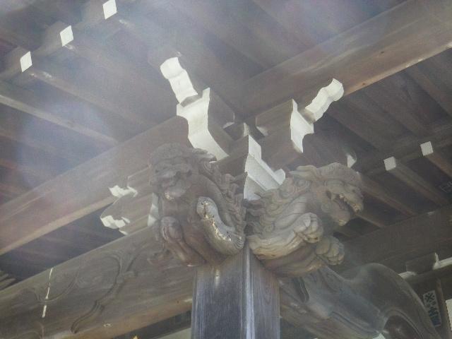 03-4)    17.04.23 鎌倉「九品寺」のナニワイバラ(難波茨)