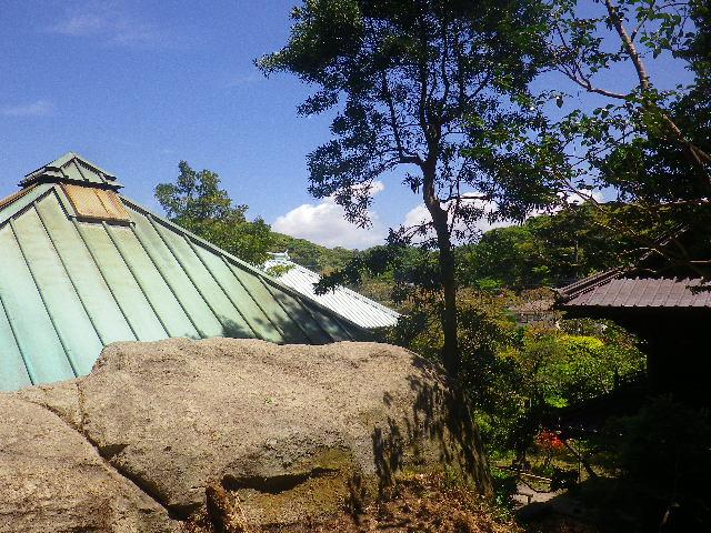 21)   太子堂安置の高台から、祠堂の鞘堂屋根。 17.05.05端午  鎌倉「英勝寺」立夏。