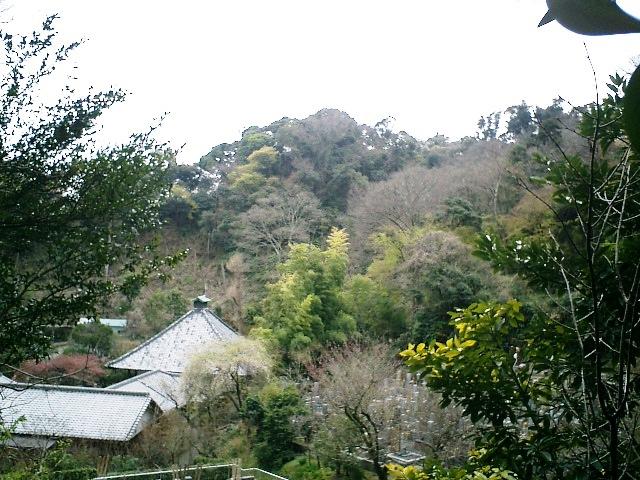 17) 鎌倉長谷「光則寺」。 「土牢」前から撮った