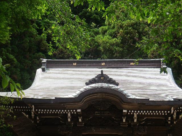 01-1)  社殿  17.05.25 鎌倉「御霊神社」を参拝した