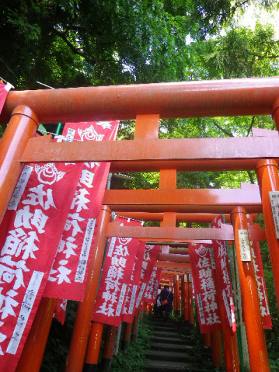 B03)   奉納された鳥居   17.06.15 鎌倉「佐助稲荷神社」参拝