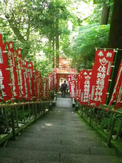 C01)   階段を登りきって振り返る  17.06.15 鎌倉「佐助稲荷神社」参拝