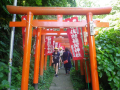 B02)  奉納された鳥居   17.06.15 鎌倉「佐助稲荷神社」参拝