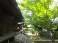 04-2)   17.06.20 鎌倉「長勝寺」参拝