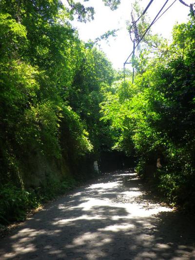 A01) 「銭洗弁財天社」前から、(総じて)「源氏山公園」へ至る急な坂道。
