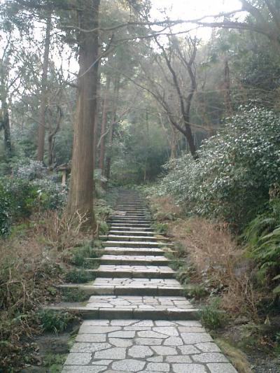 B03    07.02.21 鎌倉「瑞泉寺」梅の季節