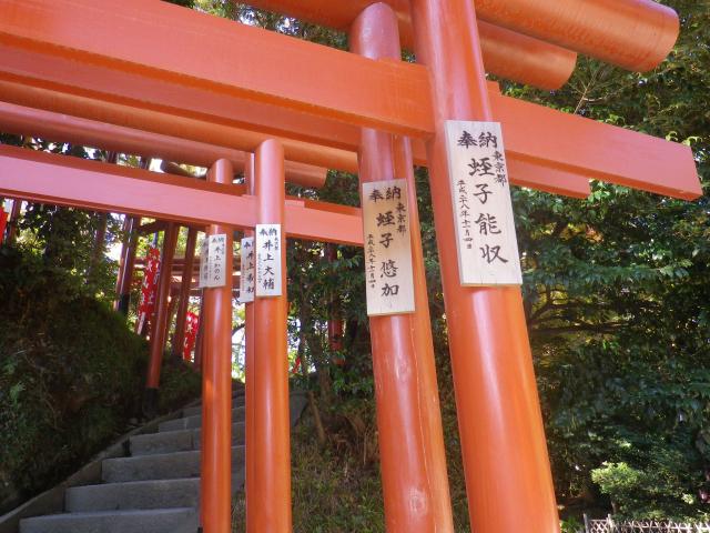 B01) 「丸山稲荷社」参拝 17.11.24 初冬の 鎌倉「鶴岡八幡宮」