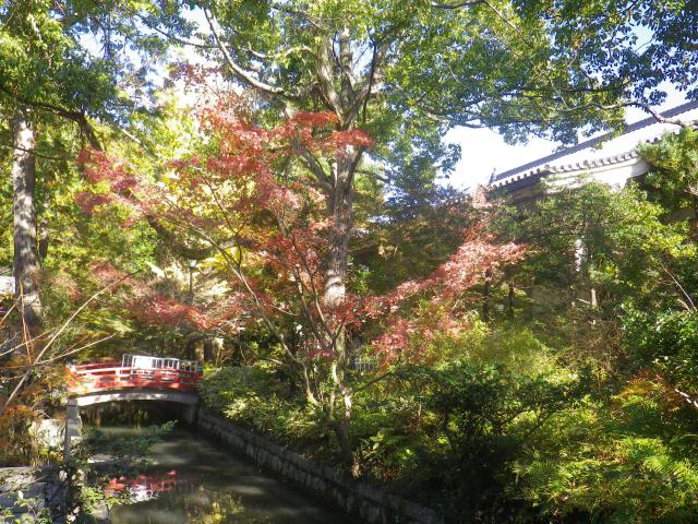 F01) 「白旗神社」参道 ( = 鎌倉国宝館前) 17.11.24 初冬の 鎌倉「鶴岡八幡宮」