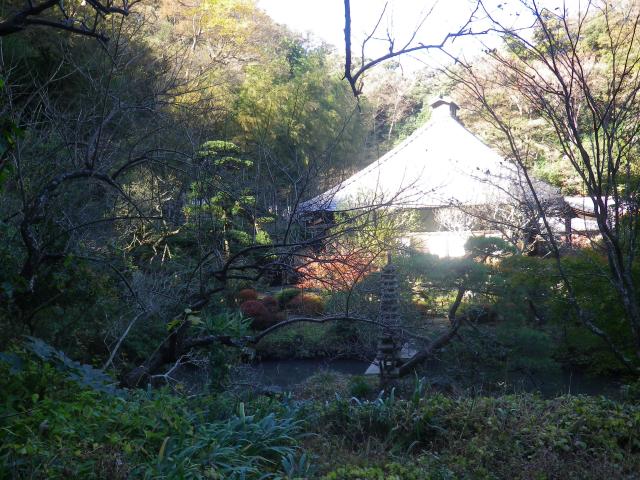 05)    17.11.25 初冬の鎌倉「光則寺」