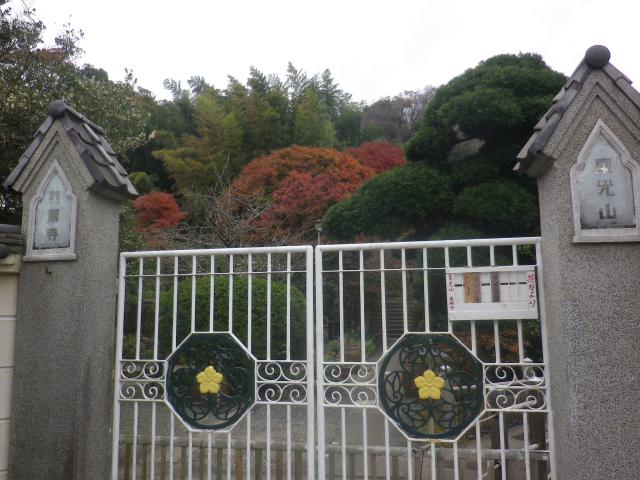 01)  通用門   17.11.30 鎌倉「英勝寺」塀の外から紅葉狩り