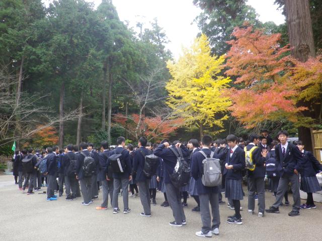 05-0) 山門手前の階段下 17.11.30 紅葉の頃 鎌倉「円覚寺」 / 塔頭