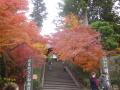04-1) 総門前の階段 17.11.30 紅葉の頃 鎌倉「円覚寺」 / 塔頭