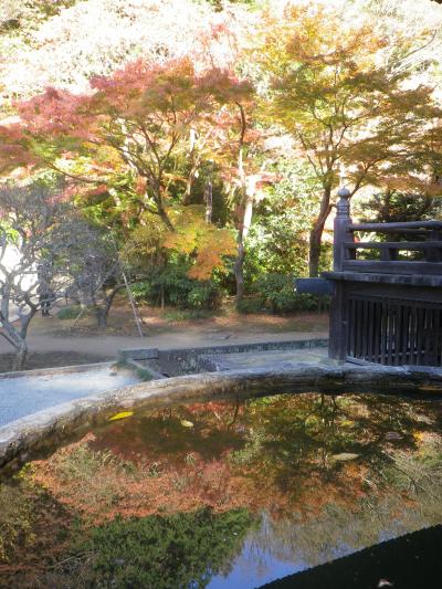 F01-2)  祖師堂周辺  17.12.06 鎌倉「妙本寺」紅葉の頃