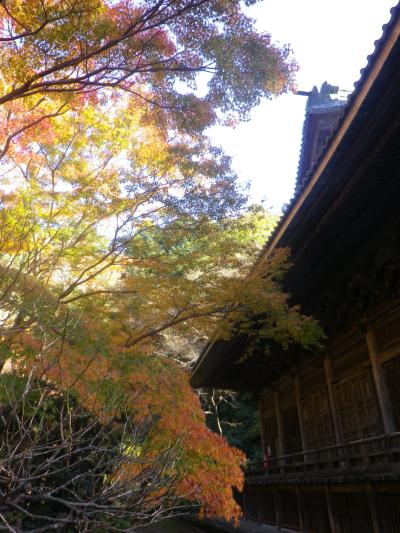 F02) 祖師堂周辺 _ 左側  17.12.06 鎌倉「妙本寺」紅葉の頃