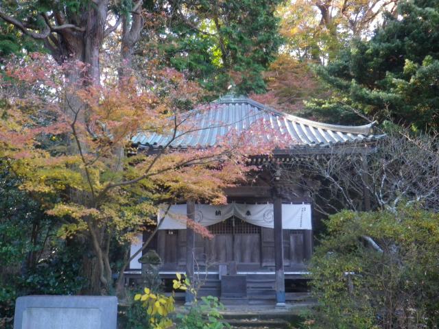 06-2)   17.12.12 鎌倉「安国論寺」今日は富士山が見えたヨ
