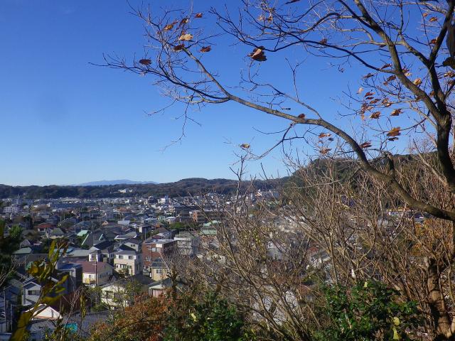 13-3/3a)   17.12.12 鎌倉「安国論寺」今日は富士山が見えたヨ