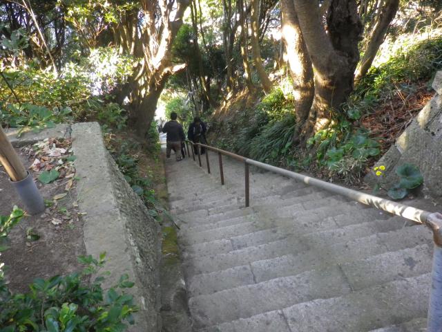 06) (私の仮称)表参道 の急階段から進行   17.01.01  小坪「天照大神社」参拝 _ 逗子市
