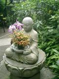 06)    06.06.10鎌倉「明月院」紫陽花の季節