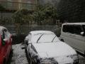 18.03.21 春彼岸の中日に雪が降った