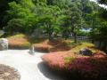 04)    18.05.15 鎌倉「光明寺」 石庭にサツキが咲き始めたヨ