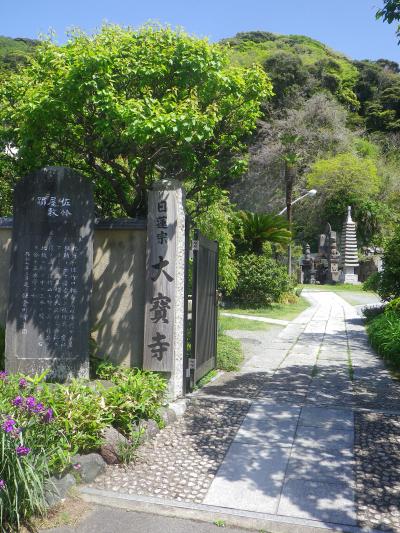 01-1)   18.04.19 鎌倉「大宝寺」盛りを過ぎて散り始めた山藤の花